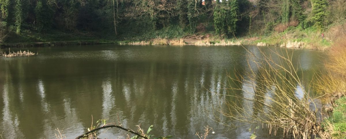 Fishing Lake, Charles Street, Louth, East Lindsey, Lincolnshire