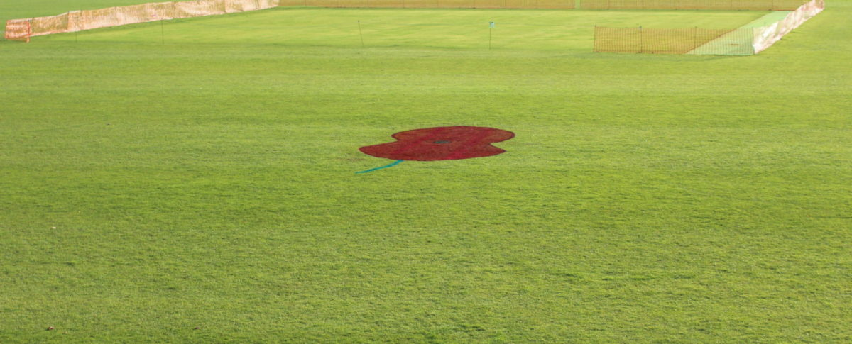 Poppy, Sports Field, Cricket, London Road Pavilion, Louth, Lincolnshire